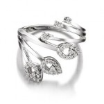 jewellery-cleaning2